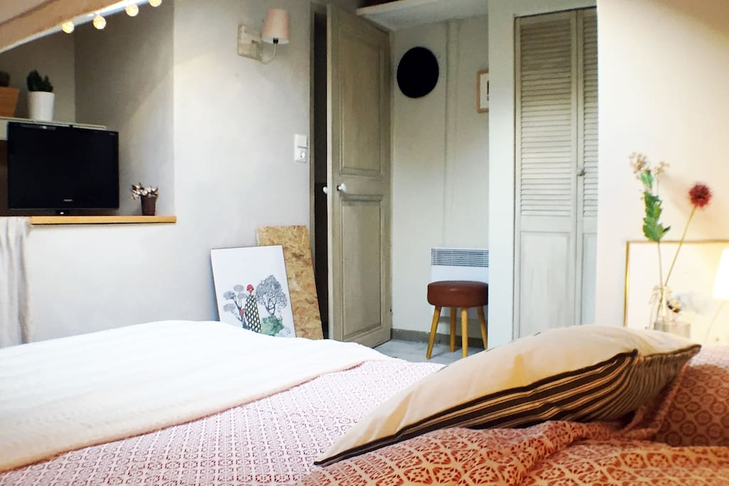 Chambre cosy au coeur de strasbourg appartements louer for Chambre agriculture champagne ardenne