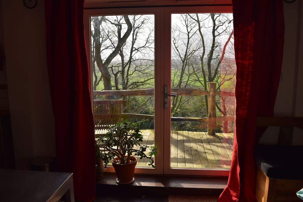 View through the tree tops and private balcony