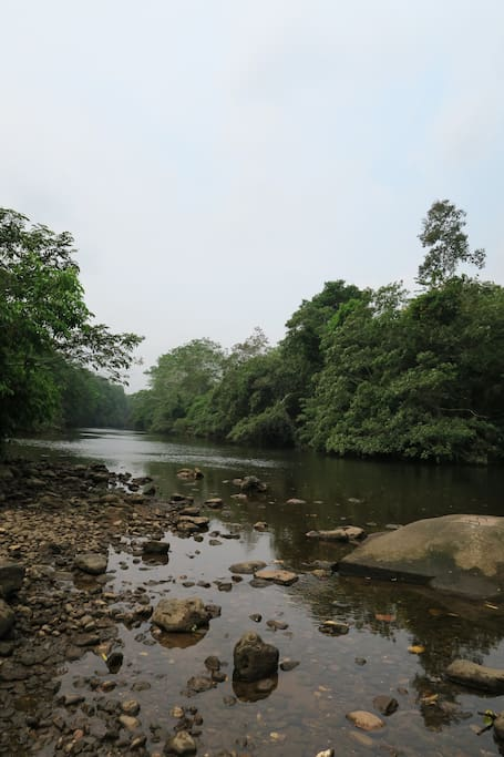 The Macal river bordering the property.