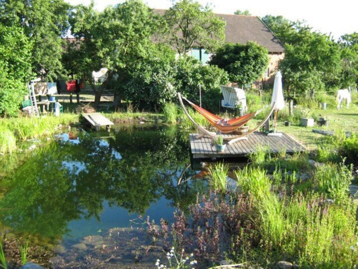 Idyllische Ferienwohnung auf einem Ökohof, Biohof