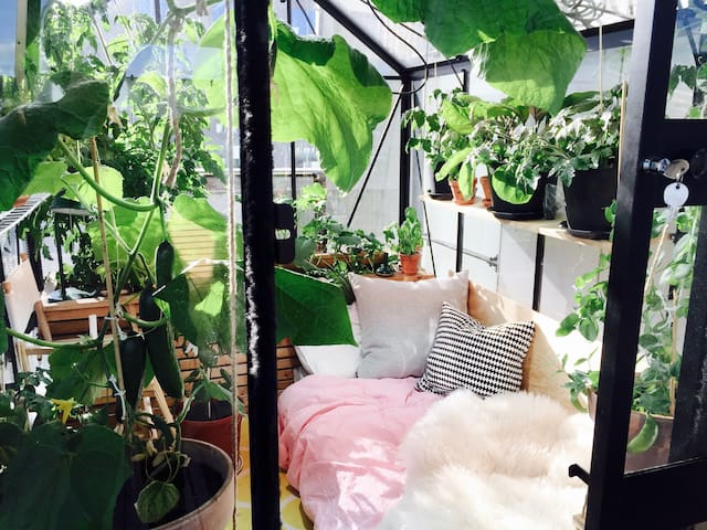 Greenhouse with a view! A unique experience