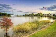 Freedom Lake Park is less than a mile from the house & a great place to go relax, have fun or workout. There are two lakes, a workout area, picnic tables & grills, a playground, bathrooms, a dog park and plenty nature.