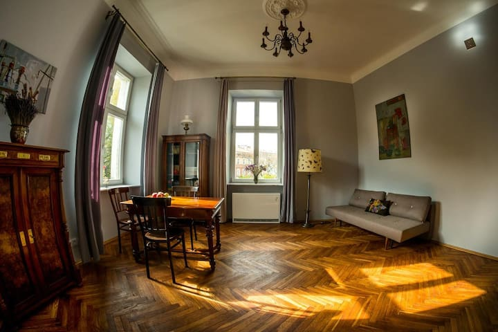 Authentic, 19th century flat with a view! - Kraków - Apartemen