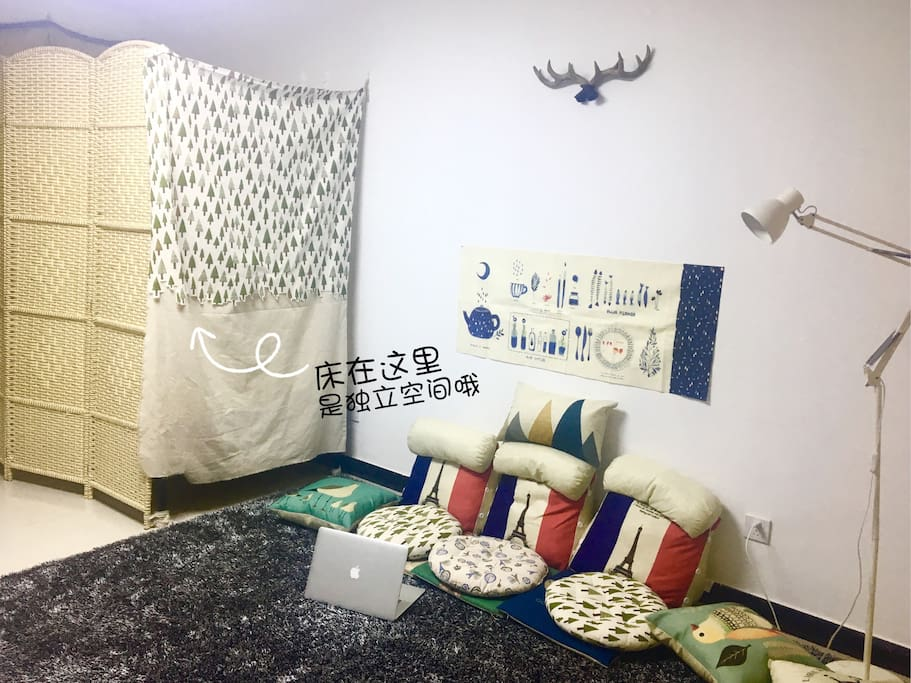 床在客厅一角,掀起帘子就能看到宽敞明亮的客厅、踩在地毯上,不会觉得空间狭小