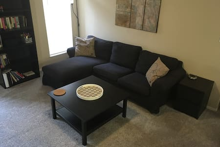 Entire Apartment! Conveniently located near i-75. - Tampa - Pis