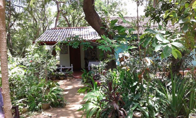 Pathum B&B with Triple AC Room near Sigiriya Rock - Sigiriya - Hus