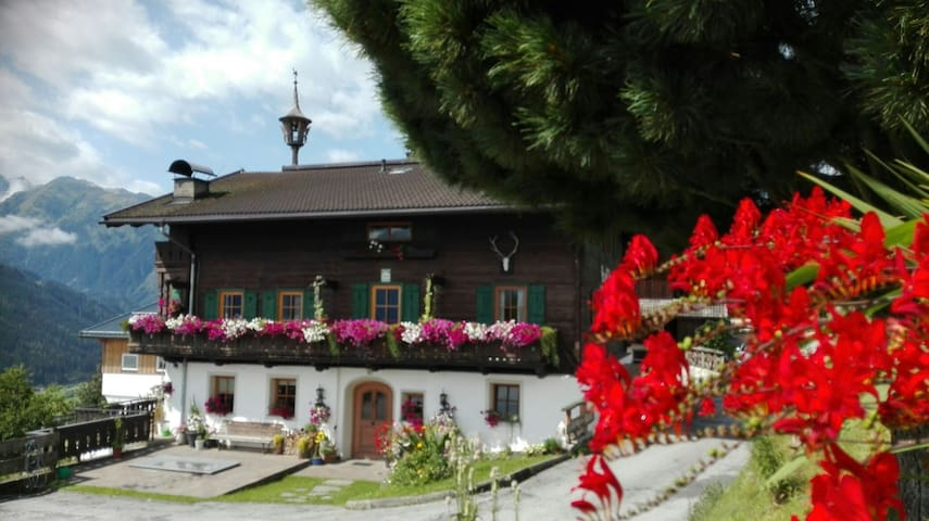 Steffhof - Ensuite room in charming austrian farm - Mittersill - Bed & Breakfast
