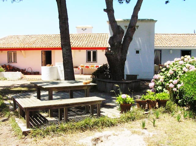 Casa de Campo/Praia/Holiday Cottage near the beach - Vila Nova de Milfontes - บ้าน