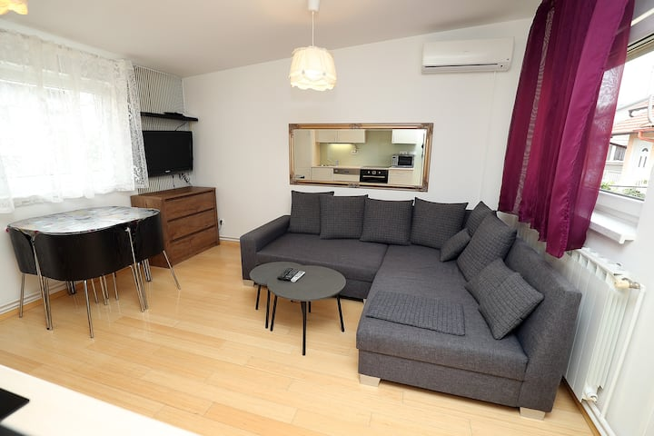 Cosy apartment close to many features