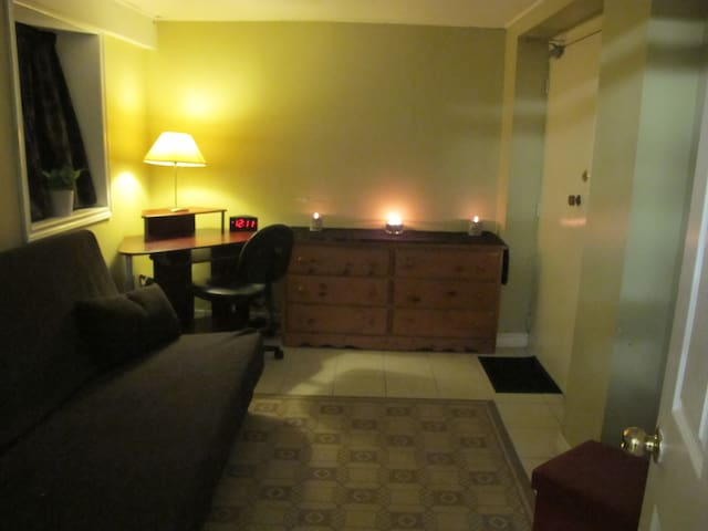 PRIVATE ENTRANCE - Clean home near downtown - Toronto - Appartement