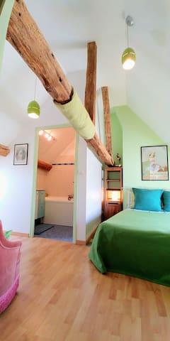 Jolie Chambre dans un Pigeonnier, vue sur les toits et sur la rivière le Doubs! Petit salon, baignoire et toilettes séparées