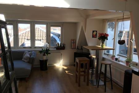 Cosy and modern apartment - 乌特勒支 - 公寓