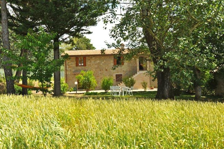 Casa Tua a Pilonico Paterno - Perugia - House