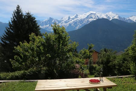 Appartement face au Mont-Blanc - Passy - Διαμέρισμα