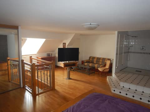 suite parentale 54 m2
