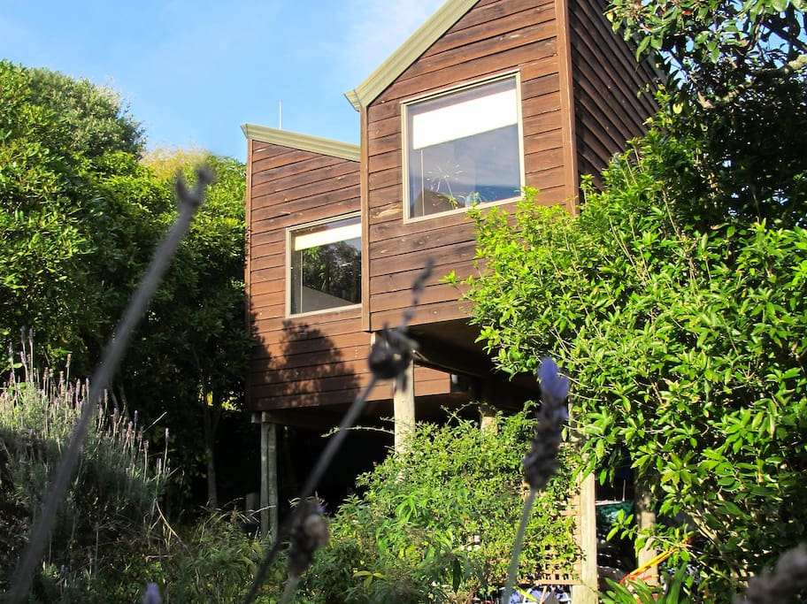 Bird's Nest - Our wonderful timber house for you to enjoy. View from the front.