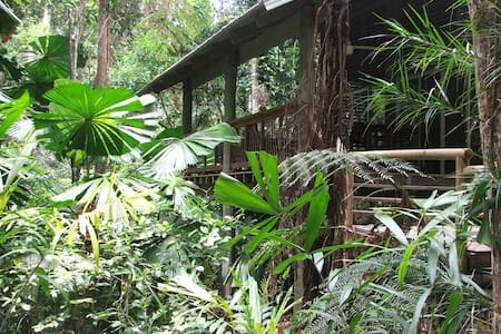 Secluded Rainforest Retreat - Jubilee Heights