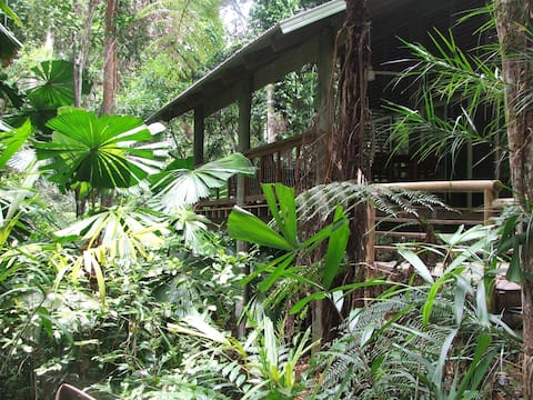 Secluded Rainforest tropical Retreat