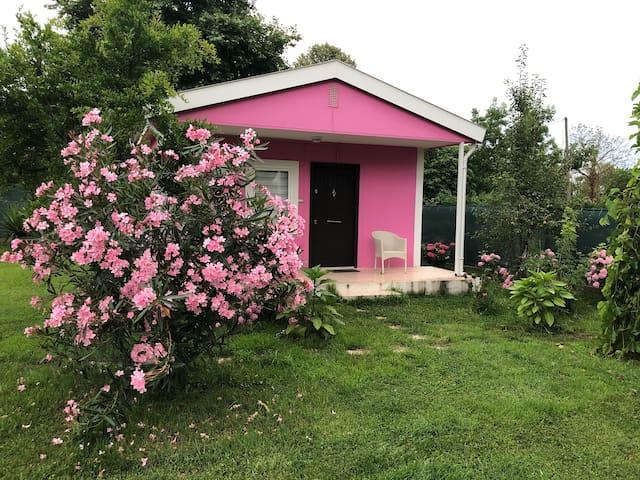 Penguen House - Pink Bungalow