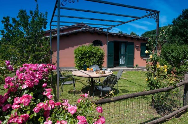 Tenuta Le Dolci Colline - Trevignano Romano - House
