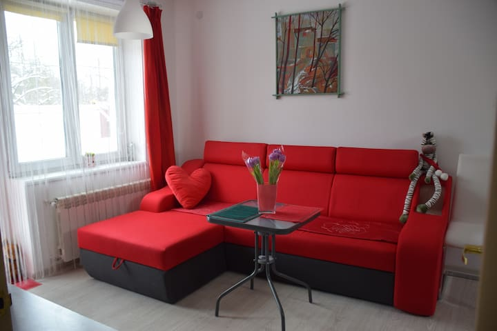 room near Bus Station wi-fi,parking - Lviv - Ev