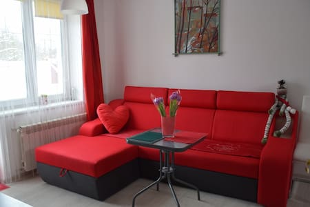 room in a private house wi-fi,parking - Lviv - House