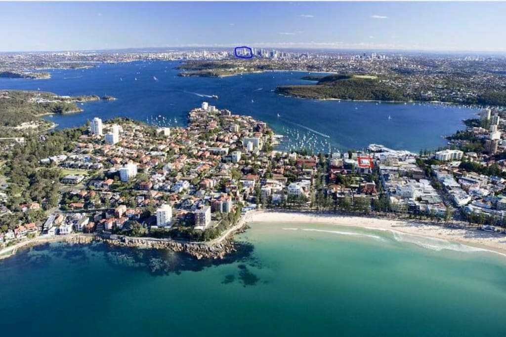 Live the beach lifestyle in Manly! red: our apartment, blue: Sydney city centre (20min by ferry)