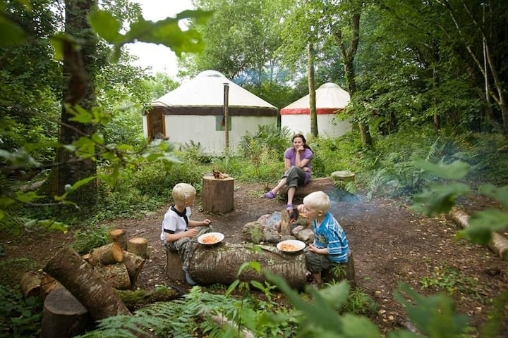 Unique Large Family Yurt in Woodland Village