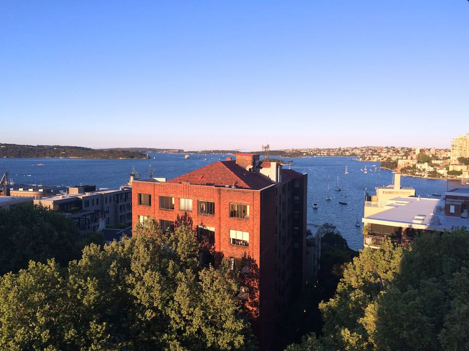 ACTUAL VIEW of Sydney Harbour from our huge windows.
