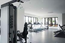 Free Access Gym