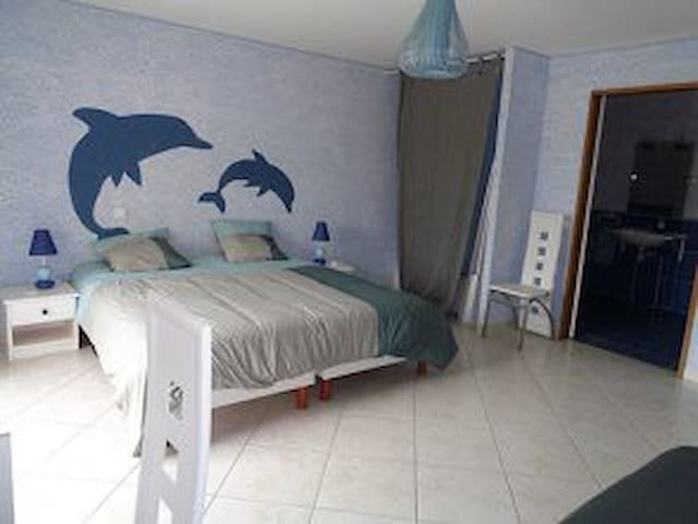 chambre Dauphin - Volon - Guesthouse
