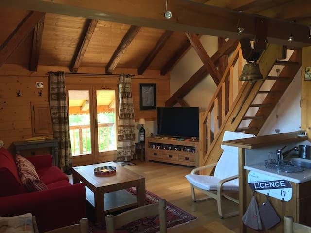 Appartement dans une vieille ferme face au MtBlanc - Passy - Apartamento