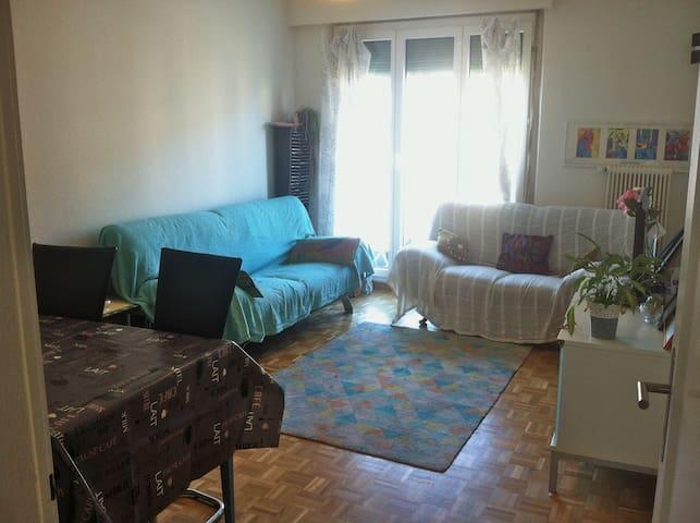 Appartement 6 pièces proches toutes commoditées - Thônex - Appartement
