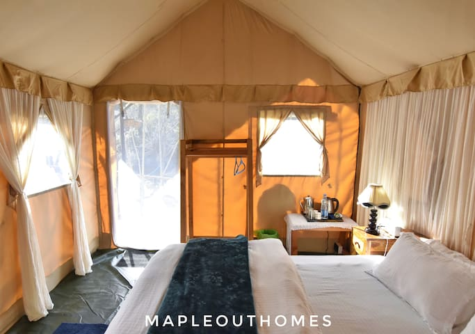 Inside view of Jungle safari  tent