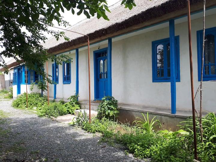 Cristina's  House
