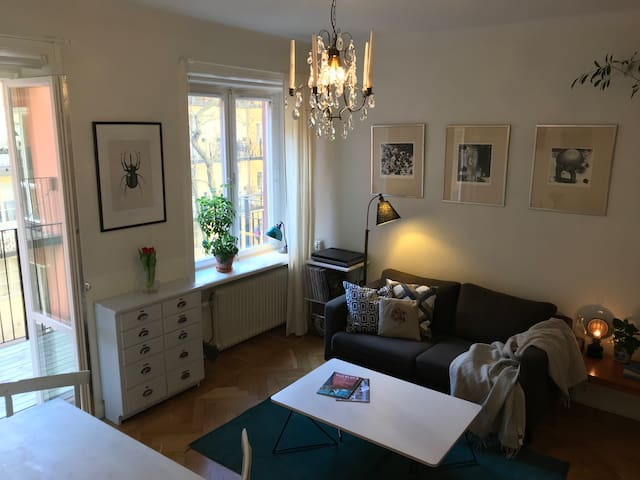 Homey apartment in the best location