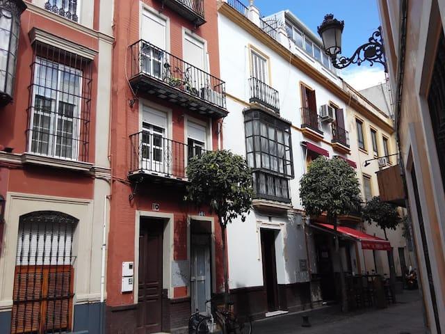 Estudio funcional junto a la Catedral de Sevilla - Sevilla - Apartemen