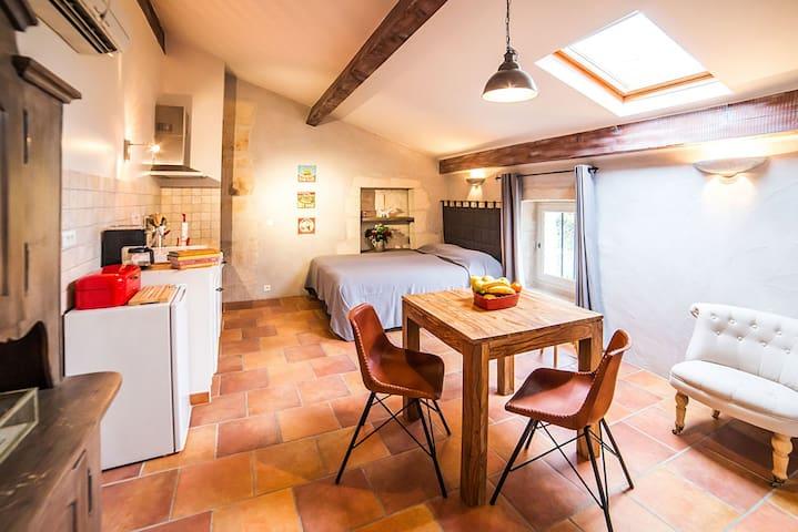 Laurier flat - Mas Bruno - Saint Remy de Provence