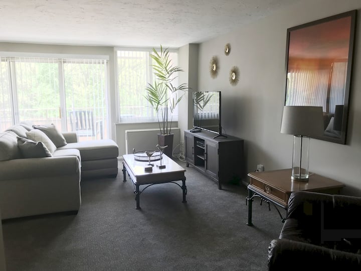 Lakewood's Gold Coast Contemporary! 1BR/1BA