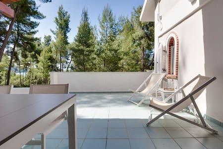 Lovely villa in Sani - Sane - Casa de campo