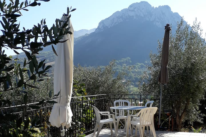 Villa Fauvette au millieu des oliviers
