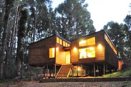 Dullstroom Forest Cabin