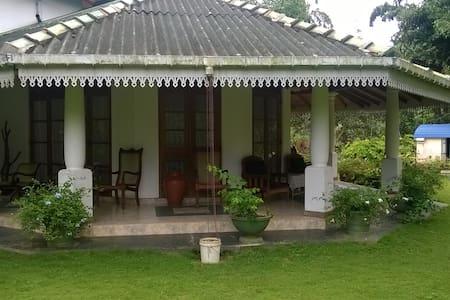 Erwin's Bunglow, Kalutara - Thebuwana