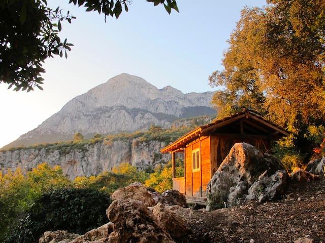cozy bungalow in paradies