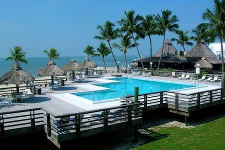 Caloosa Cove Resort & Marina (STE) - 伊斯拉摩拉(Islamorada)