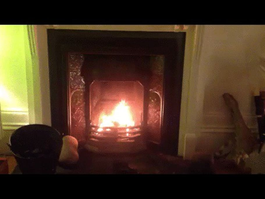 Living room open fire