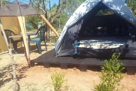 Basic tent for 2 - Eco-Camping (3)