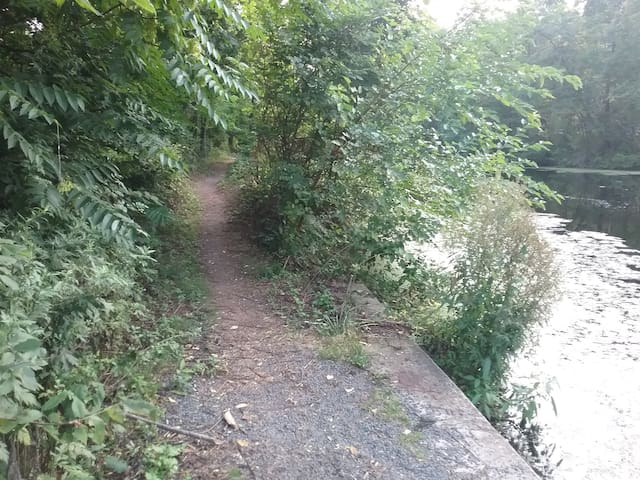 take a walk on the tow path