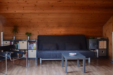 Sofa in a quiet living room - Chur - Byt