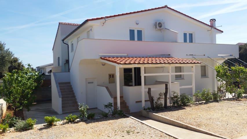Apartments renting Maretić-Mandre